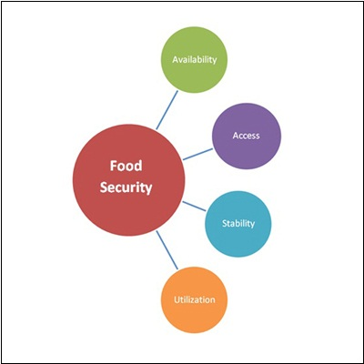 will the world achieve food security Our common future, chapter 5: food security: sustaining the potential - a/42/427 annex, chapter 5 - an element of the body of un documents for earth stewardship and.