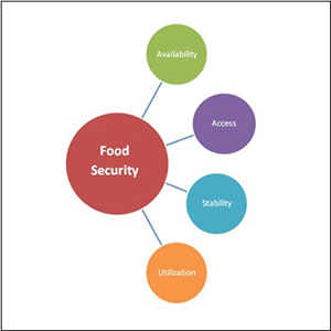 Food Security Diagram